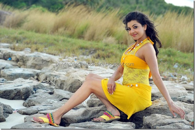 Kajal_Agarwal_hot_stills_in_Business_man_Movie_01 (6)