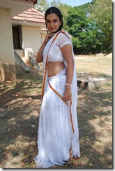 honey-rose-hot-in-saree