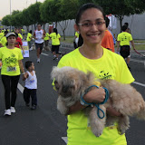 Pet Express Doggie Run 2012 Philippines. Jpg (110).JPG