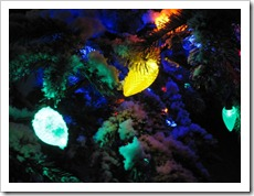 20120224_snow-lights-snowman_016