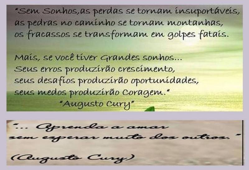 Augusto Cury Frases De Amor 5 Quotes Links