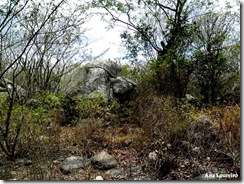 Ana - Pedras - Trabalhada com nome