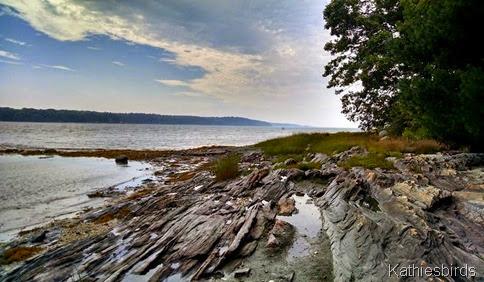 4. 9-6-14 rocky shore at Barnes landing