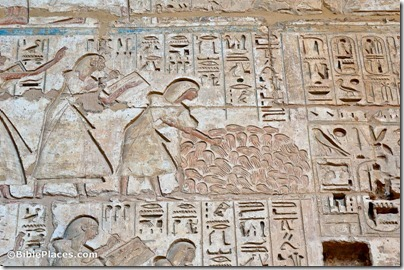 Medinet Habu, pile of hands for counting dead, tb011105878