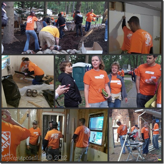 team depot Stiggy's Dogs