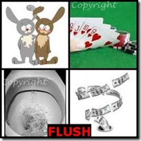 FLUSH- 4 Pics 1 Word Answers 3 Letters