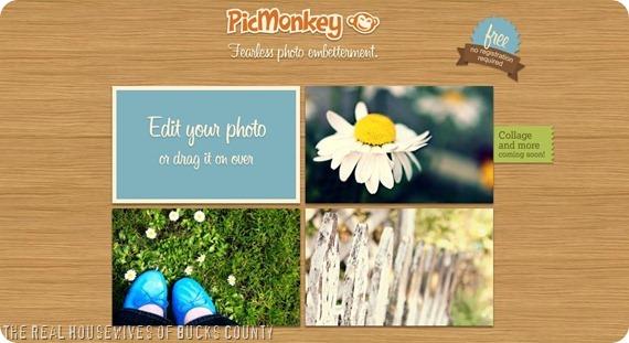 picmonkey 1