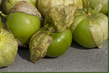 Tomatillo Verde Gigante