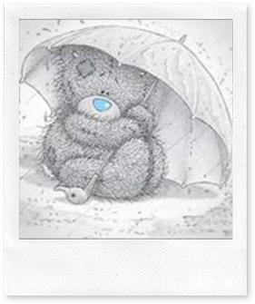 bamse i regnvær