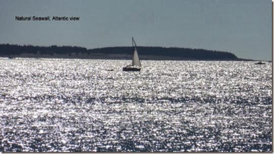 Natural Seawall, Atlantic view