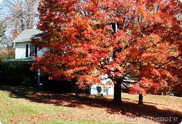 fall house 2