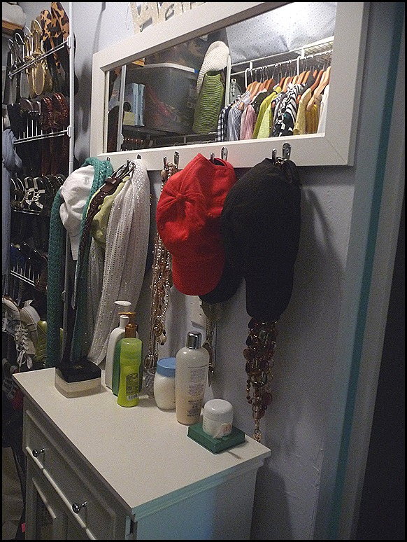 2012 Closet BEFORE Purge 006