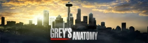 greys-anatomy poster
