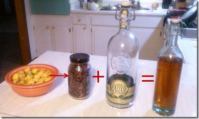 03181113 Vodquat Recipe