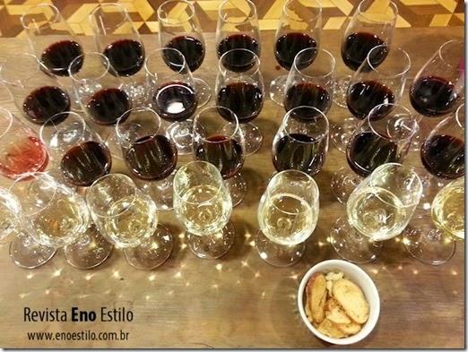 encontro-de-vinhos-rio-2015-01