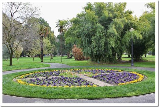 120317_Capitol_Park_Phyllostachys-bambusoides_11