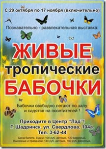 ZDuygTKFi_c