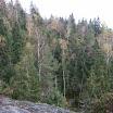 Rapid Flank March - Góry Stołowe 17-19.10.2014