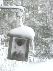 Blizzard 2.10.2013 snow covered bird house 22