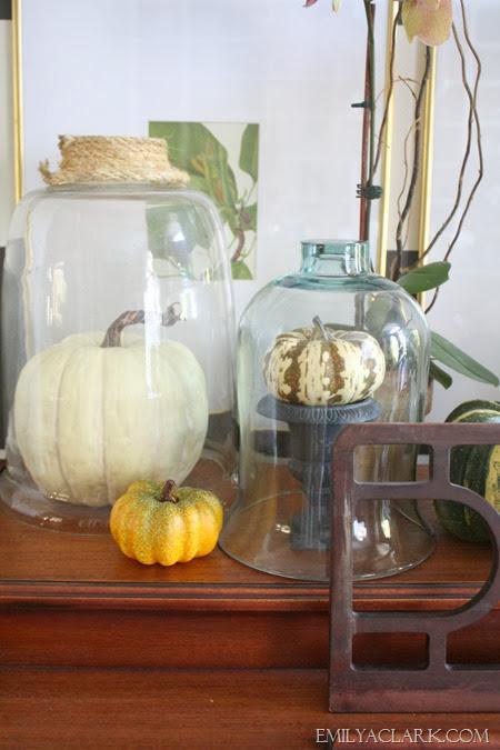 pumpkin-under-glass-cloche