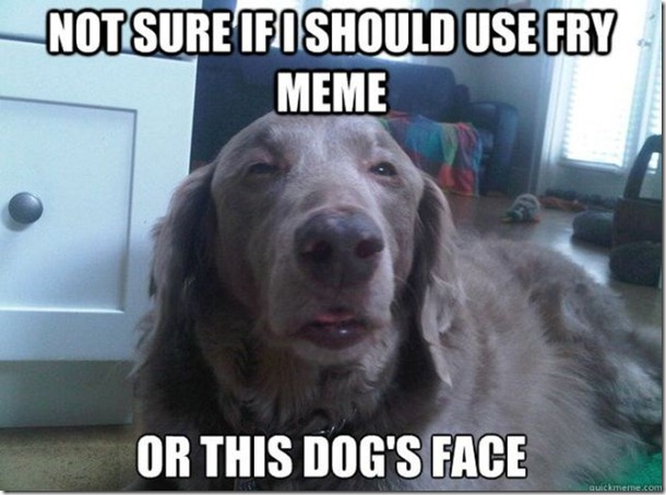 dogs-say-best-5