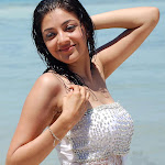 kajal-agarwal-photos-54.jpg