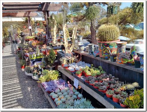 130403_StaBarbara_Terra Sol Garden Center_007