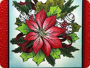 Poinsettia clsup