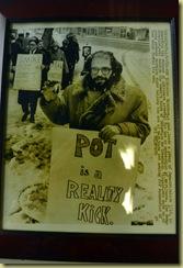 Ginsberg Pot