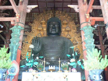 Nara: The great Budha