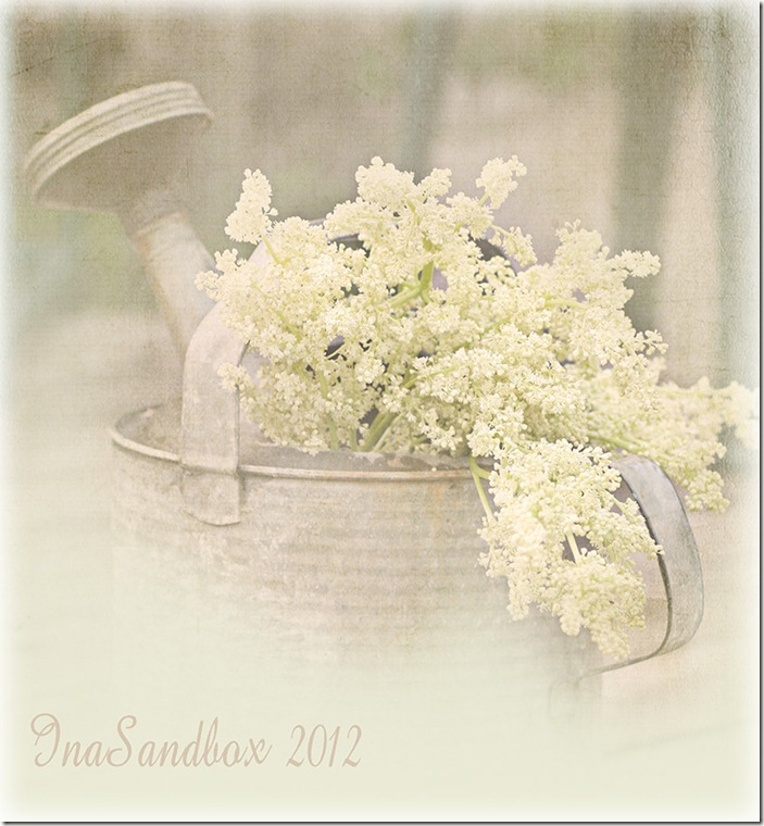 watering-can-with-textures-for-web