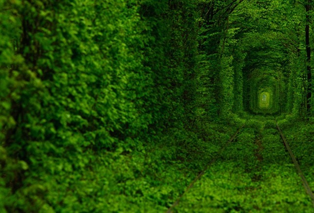 tunnel-of-love-32