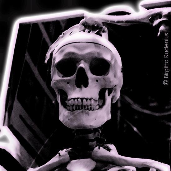 pm_20110911_skelett