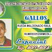 18 GALLOS.jpg