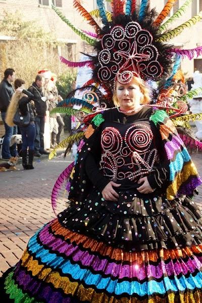 15-02-2015 Carnavalsoptocht Gemert. Foto Johan van de Laar© 051.jpg