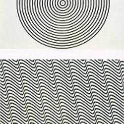 13.- Vasarely. Tres tipos de ilusiones ópticas