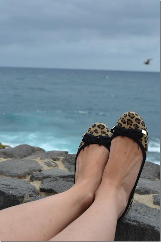 leopard_flats_3