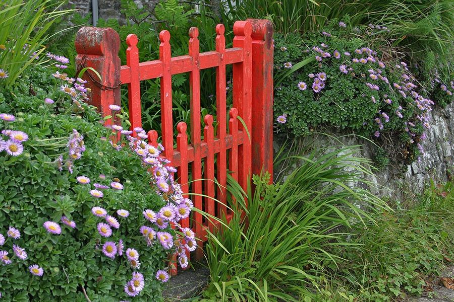 Garden Inspiration from Cornwall, England
