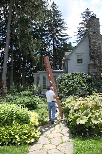 Be careful with that ladder Carlos, we don't want to damage the leaves of any of Martha's plants!