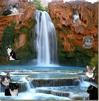 KweeCat_Waterfall