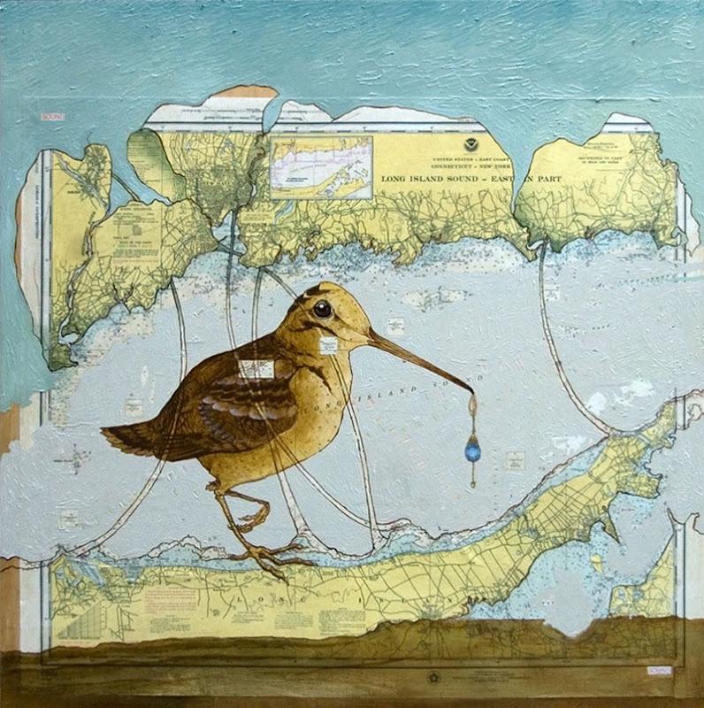 Long-Island-Woodcock