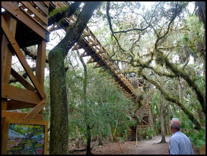 03b - Tree Canopy Walkway