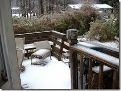 ice storm 2-15 001