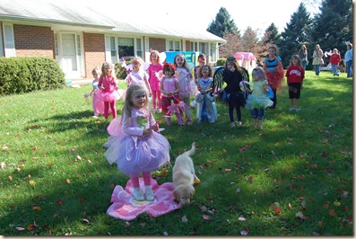 fairy party game