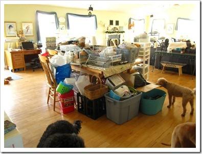 20121112_stuff-in-living-room_006