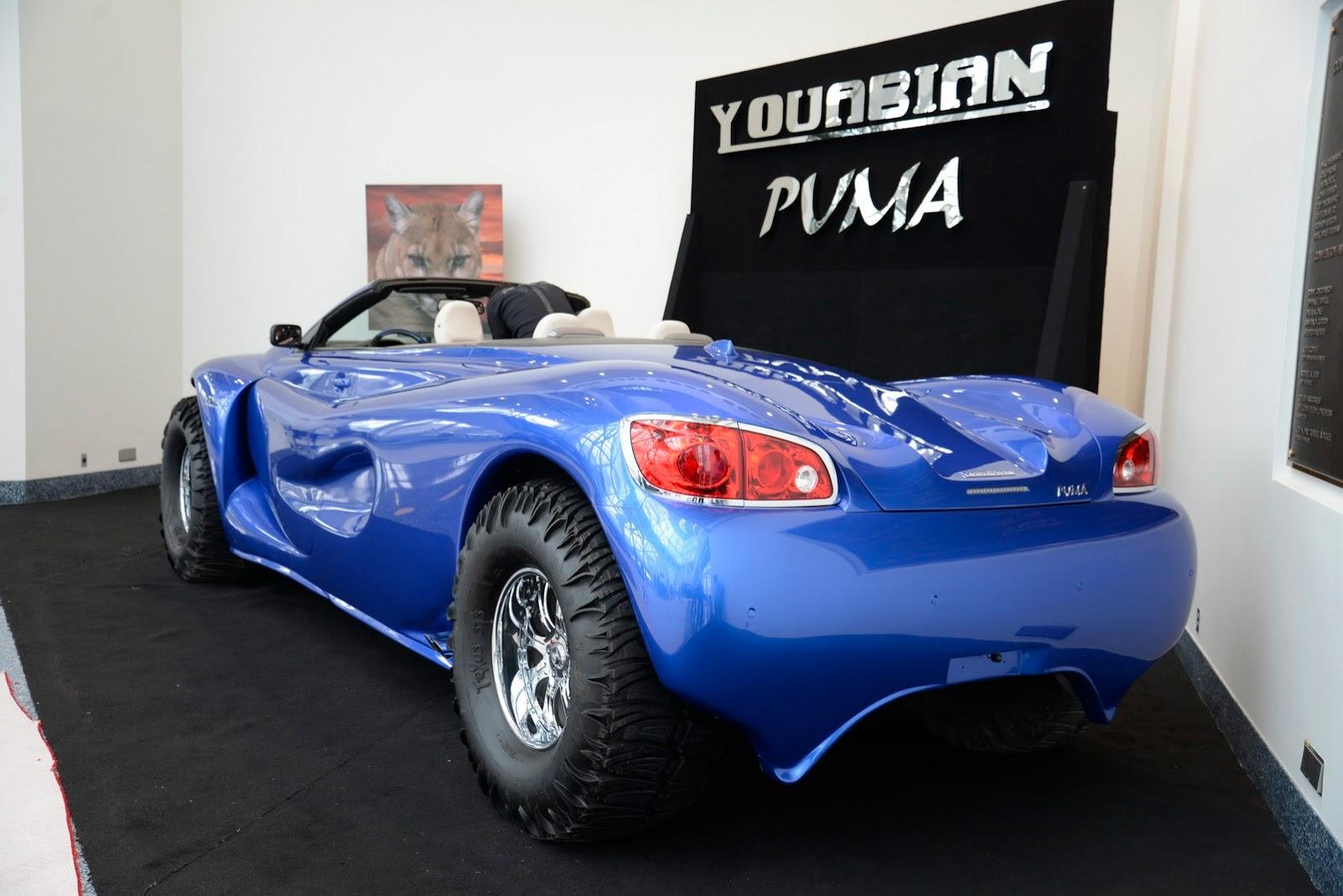 Youabian-Puma-4%25255B2%25255D.jpg