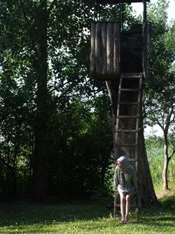 Katie y la casa-árbol