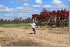 Pumpkin Patch Oct. 2011 141