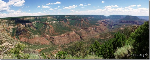 06 View SE-SW from Crazy Jug Point FS292 Kaibab NF AZ pano 7-2010 (1024x408)