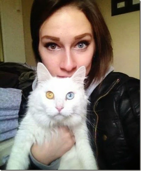 women-scary-eyebrows-046